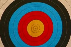 Luton Archery Friendly Game 02 11 14 Paresh Solanki-6